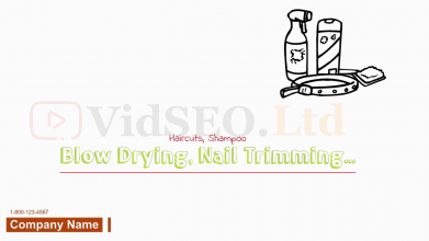 Pet Grooming Whiteboard Animation Presentation Video